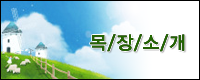 B banner.png
